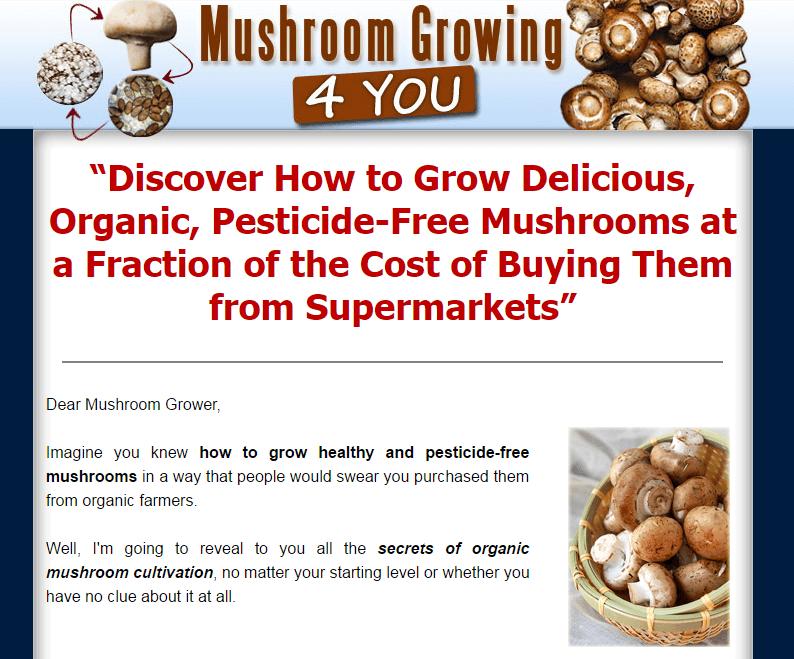 mushroom-growing-4-u
