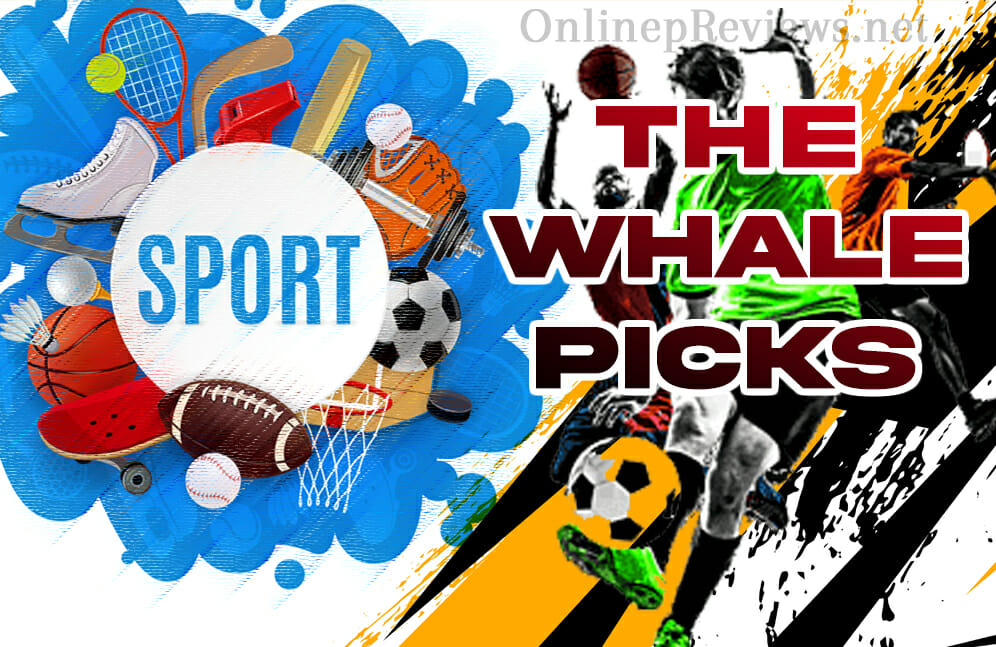 The Whale Picks Sports Betting