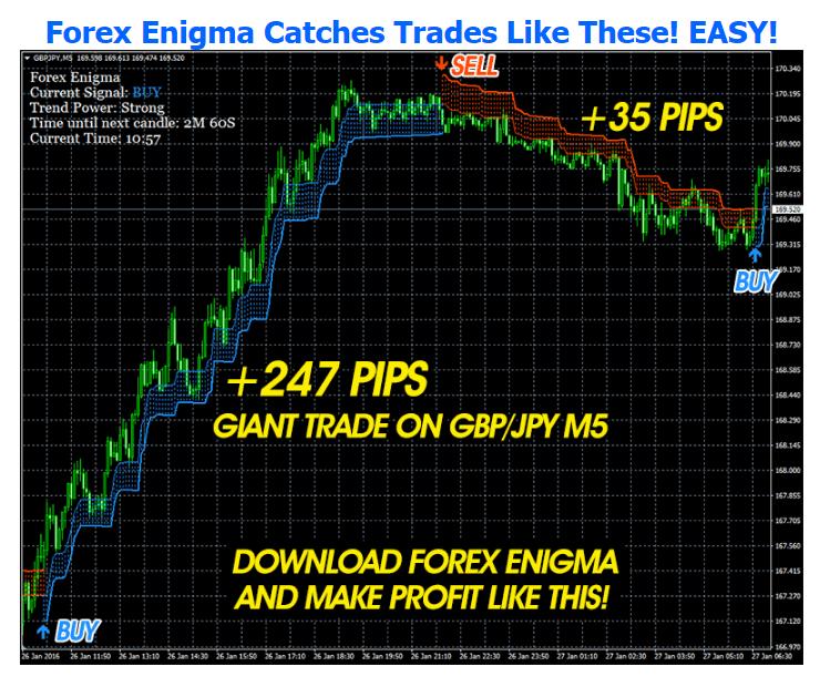 Forex Enigma 2
