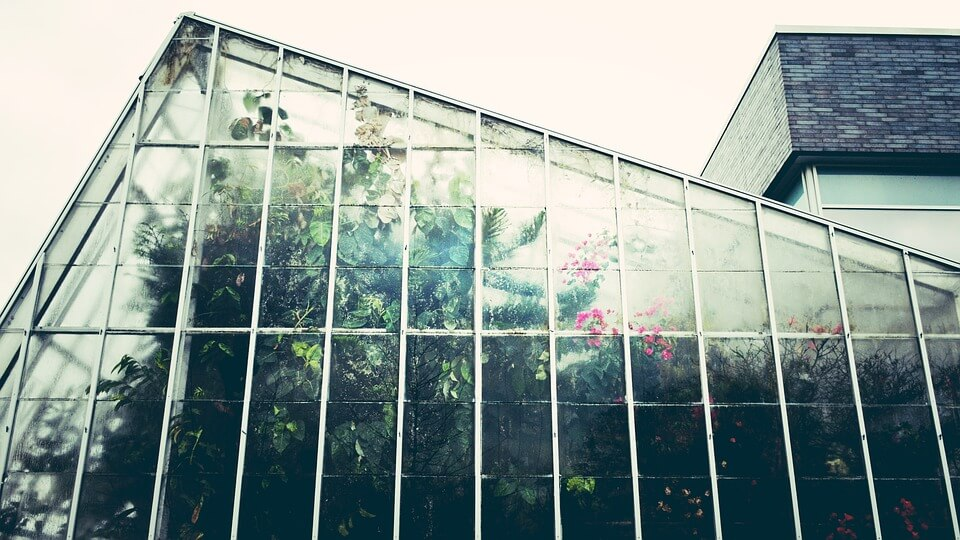 greenhouse-1246536_960_720
