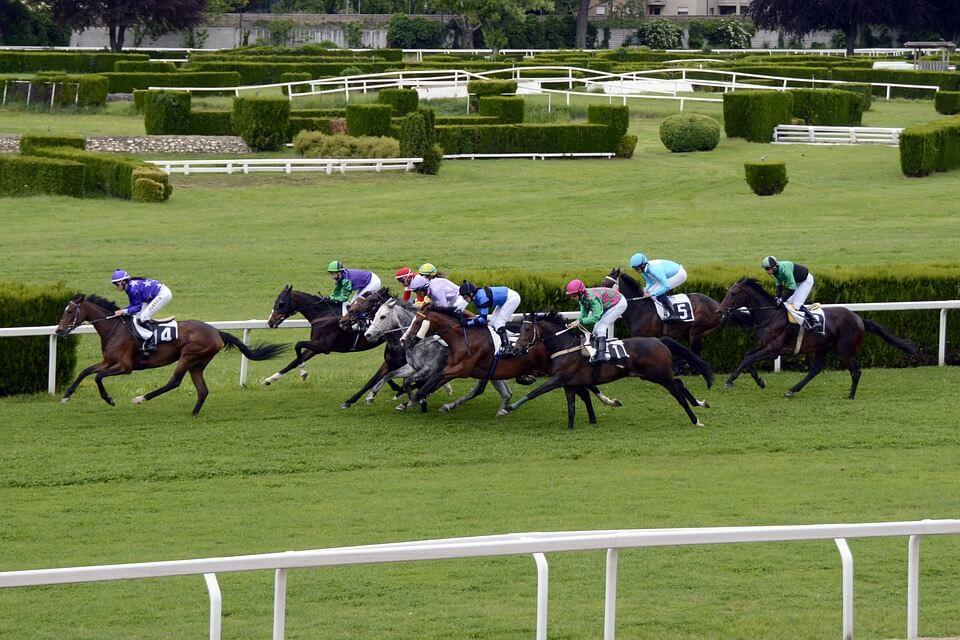 horse-racing-1577290_960_720